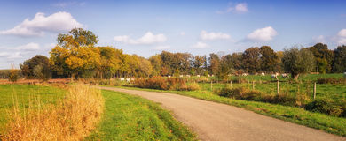 Autumn landscape netherlands Royalty Free Stock Photography