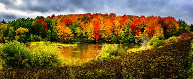 Autumn landscape in New Brunswick, Canada. Changing season with the red and yellow colors royalty free stock photos