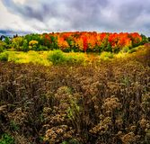 Autumn landscape in New Brunswick, Canada. Changing season with the red and yellow colors stock photography