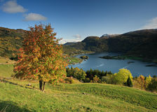 Autumn landscape in norwegian fjords Royalty Free Stock Photos