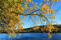 Autumn Landscape och flod Dee i Aberdeen Royaltyfri Foto