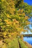 Autumn Landscape och flod Dee i Aberdeen Arkivfoton