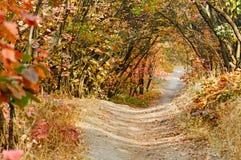 Autumn landscape in October Stock Image