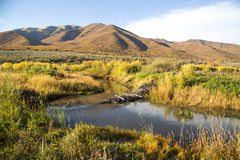 Autumn Landscape Of Beaver Dam And Colorful Mountains Stock Images