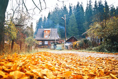 Autumn landscape with an old wooden house. Stock Photo