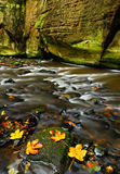 Autumn landscape with orange and yellow leaves in the water, big rock in the background, Kamenice river, in czech national park, C. Zech Republic Royalty Free Stock Photos