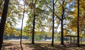 Autumn landscape over the lake Stock Image