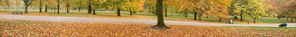 Autumn Landscape Panorama Royalty Free Stock Image