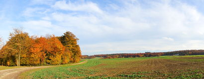Autumn landscape panorama. Colorful forest and green field in autumn Stock Photography