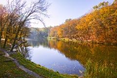 Autumn Landscape Parco in autunno I colori luminosi dell'autunno in parco dal lago fotografia stock libera da diritti