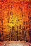 Autumn landscape in park Stock Photo