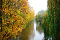 Autumn Landscape. Park in Autumn. The bright colors of autumn in Stock Images