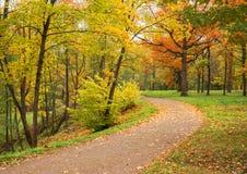 Autumn Landscape Park in daling De gouden Herfst Stock Foto's