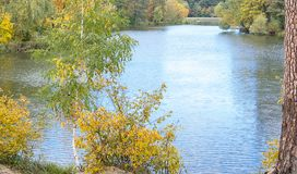 Autumn Landscape Park in de Herfst Stock Afbeeldingen