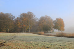 Autumn landscape in park with frost and morning mist Stock Photography