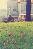Autumn landscape in a park, with golden brown leaves on the green grass Stock Photography