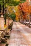 Autumn Landscape Park mit bunten Bäumen, eine gehende Gasse und strukturierte Bänke und Blumentöpfe spanien stockfotos