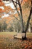 Autumn landscape - park in vintage tones Royalty Free Stock Photos