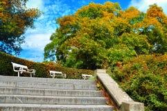 Autumn Landscape Parque colorido hermoso de la ciudad del otoño con los bancos blancos Imagen de archivo