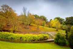Autumn Landscape Parque en otoño Imagenes de archivo