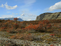 Autumn landscape. In the Patagonia Stock Photo