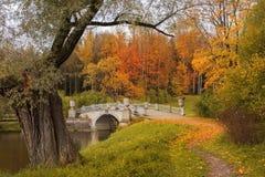 Autumn landscape in Pavlovsk park, Saint Petersburg Royalty Free Stock Photos