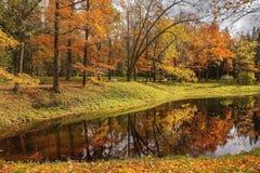 Autumn landscape in Pavlovsk park, Saint Petersburg Stock Photos
