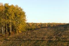 Autumn Landscape photo stock