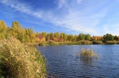 Autumn landscape - pond in the park Stock Photos