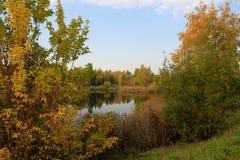 Autumn landscape: pond in the park Stock Images