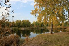 Autumn landscape: pond in the park Stock Photography