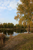 Autumn landscape: pond in the park Royalty Free Stock Photos