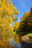 Autumn landscape with pond in Pushkin, Royalty Free Stock Images