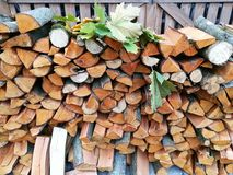 Autumn landscape. Preparation of firewood for the winter Royalty Free Stock Images