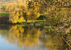 Autumn Landscape in Provence France Royalty Free Stock Images