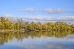 Autumn Landscape Río y orilla del río con los árboles amarillos Sauce y álamo en la orilla del río Fotos de archivo