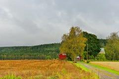 Autumn landscape with rain Royalty Free Stock Image
