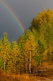 Autumn landscape. Rainbow over forest in sky Royalty Free Stock Image
