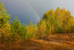 Autumn landscape. Rainbow over forest in sky Stock Image