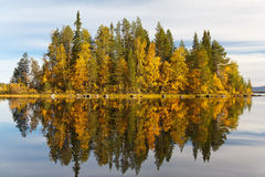 Autumn landscape with a reflection in the lake Royalty Free Stock Photo