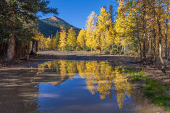 Autumn Landscape Reflection Royalty Free Stock Photo