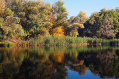 Autumn landscape with reflection in the water Stock Photography