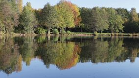 Autumn landscape reflection in the water stock video footage