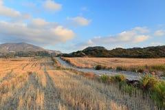 Autumn landscape, Rhodes Island (Greece) Stock Photos