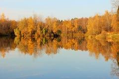 Autumn Landscape Riva pittoresca Immagine Stock