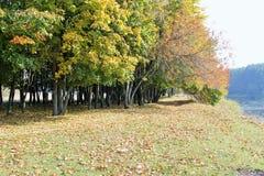 Autumn Landscape Riva pittoresca Fotografia Stock