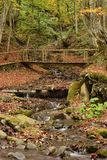 Autumn landscape with the river Stock Photos
