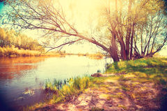 Autumn landscape with a river Stock Photo