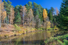 Autumn landscape with the river, the forest and the blue sky Stock Photos