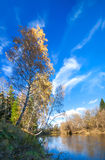 Autumn landscape with the river, the forest and the blue sky Stock Photo